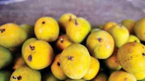 Mango Coconut Superfood breakfastbowl