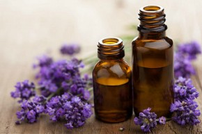Free Virtual Essential Oils Workshop