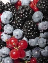 richnutrientberries90deg
