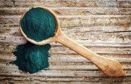 blue-algae-powder