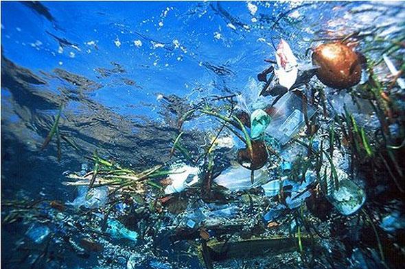 seaplastic